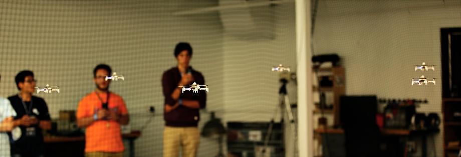 Robotic Swarms